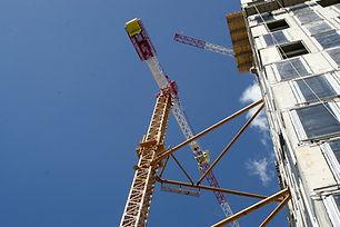 Crane Close Up
