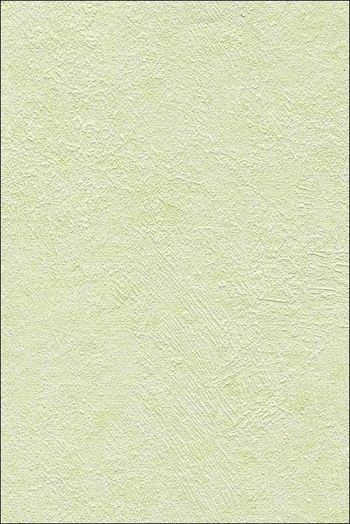 Орхидея_светло-зеленая