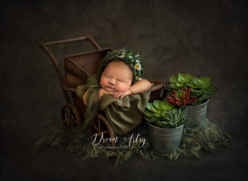 Newborn-photograher-near-me
