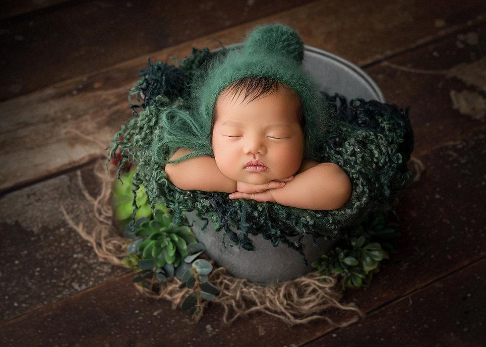 Dream Artsy Photography-.jpg