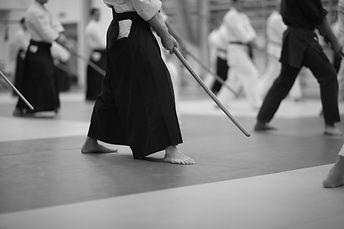 Bujitsu