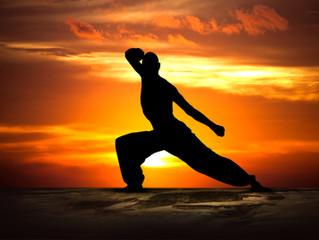 The Principles of Karate #11