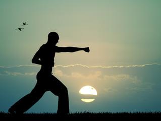 The Principles of Karate #10