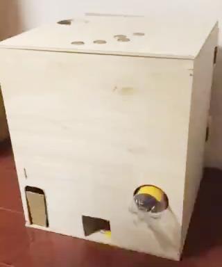 木製ガチャ