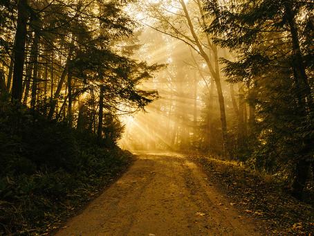 Journey of Lament