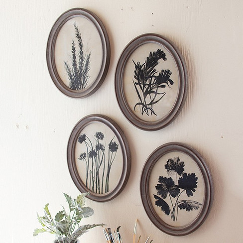 framed botanical prints under glass