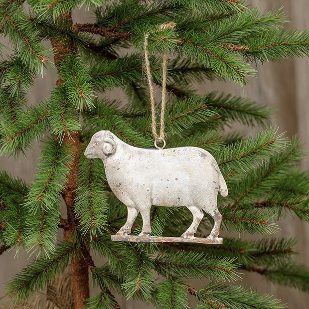 Weathered Ram Christmas Ornament, Set of 6