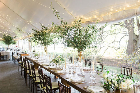 organic-greenery-farm table-décor-tent-private-residence-Chicago