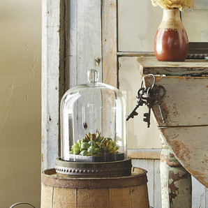 Antique Bell Jar Display Dome With Rustic Wood and Metal Base