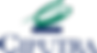 1200px-Logo-Ciputra.png