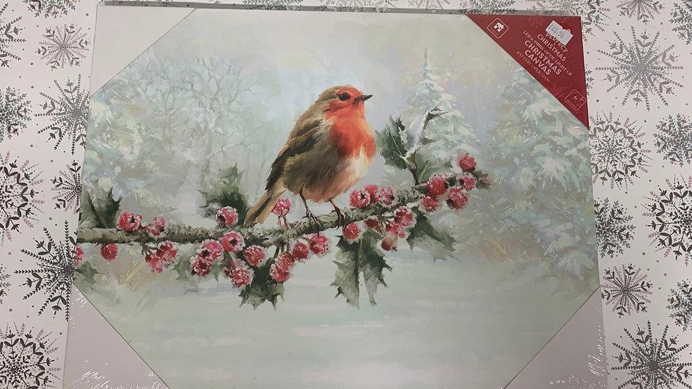 Robin Christmas Canvas