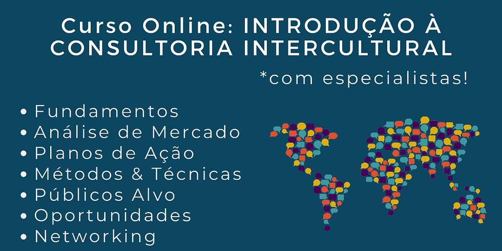 Curso online - Introdução à Consultoria Intercultural