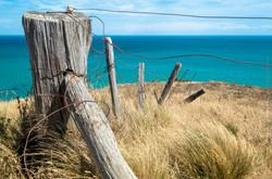 Old fence, Banks Peninsula