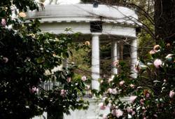 Band rotunda, Hagley park