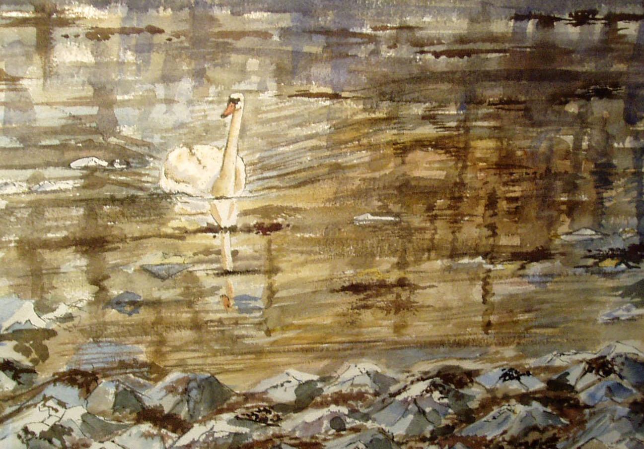 Swan in a Frozen Sea