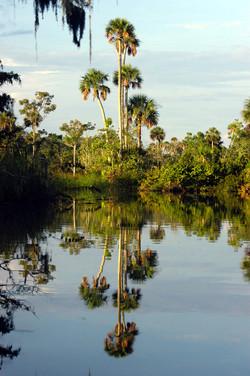 Bennett's Creek
