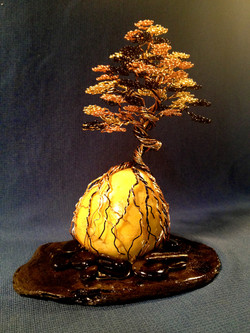 Bonsai on yellow quartz