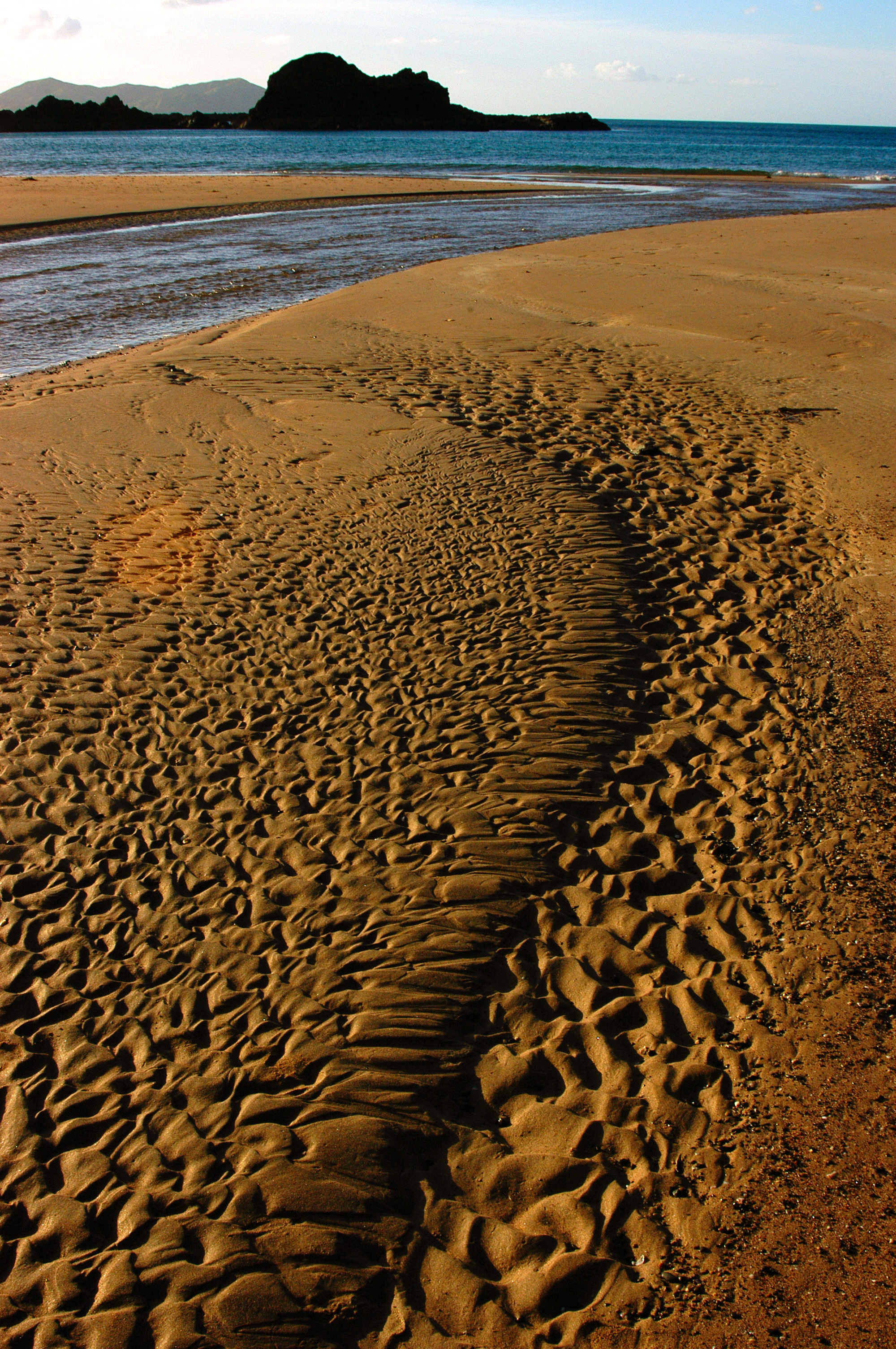 New Zealand Sand Ripples