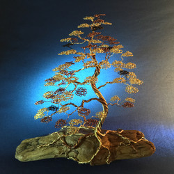 Bonsai on Driftwood