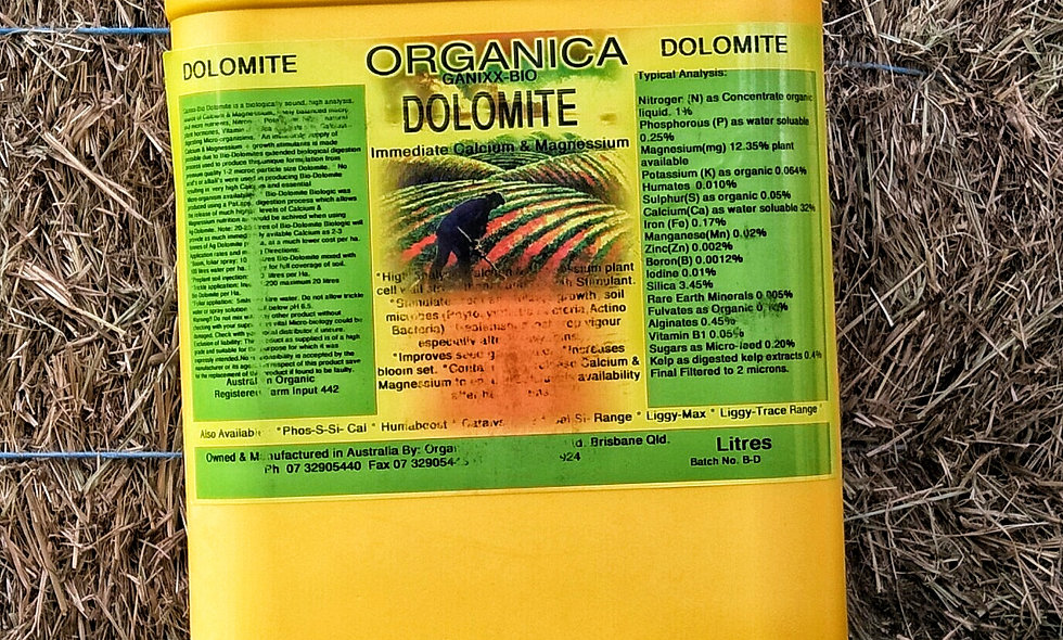 Organica Dolomite