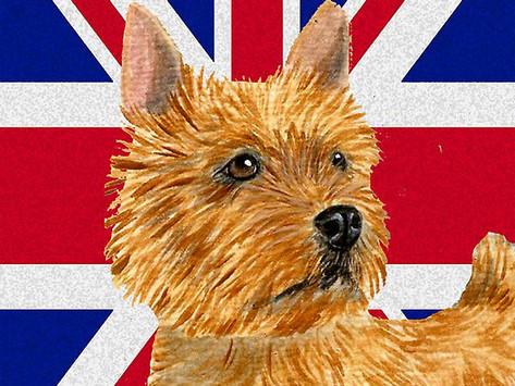 Договор купли - продажи щенка