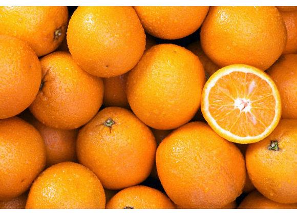 Oranges à jus Morell Bio
