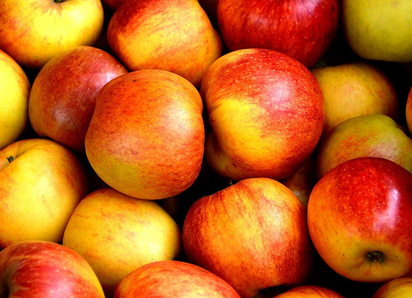 Pommes Bio