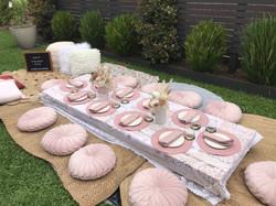 Plush Pink Picnic