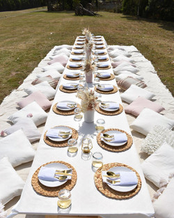 Hen's Party Luxe Picnic