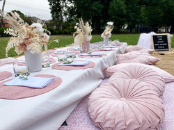 Baby Shower Luxe Picnic
