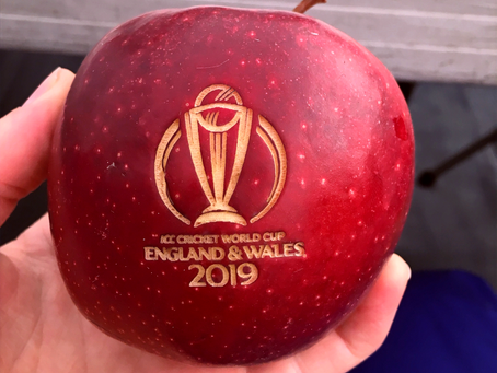 This time last year... Looking back on the Cricket World Cup 2019