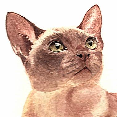 fine art cat watercolour painting