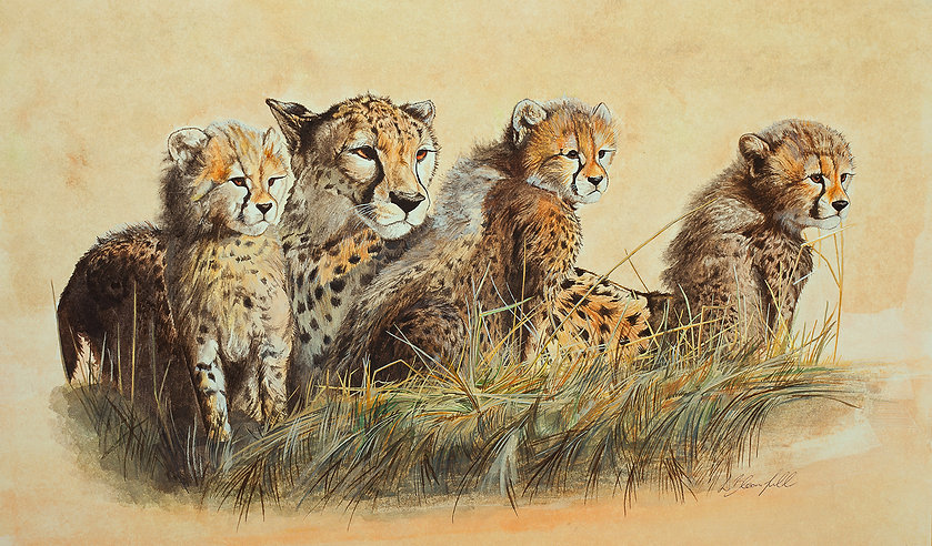 Cheetah family - New Pop Up.jpg