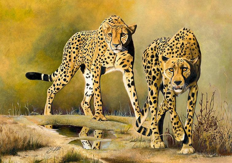 Cheetah%20Brothers%20%20-%20New%20Pop%20