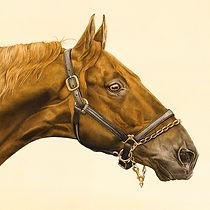 Fine art horse paintings