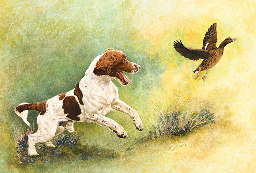 Springer Spaniel fine art dog painting