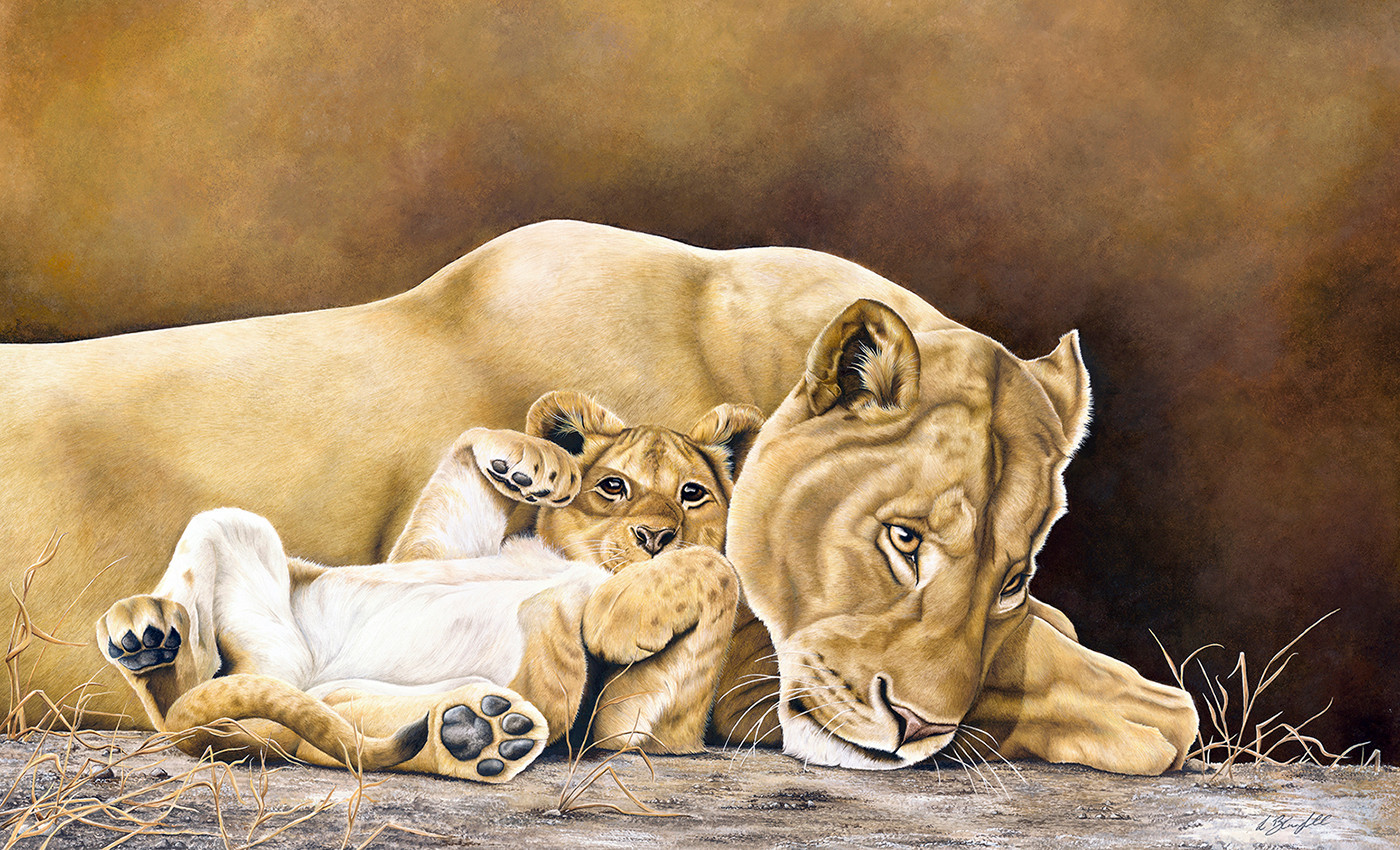 Lioness & Cub - New Pop Up.jpg