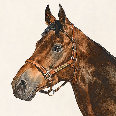 Thoroughbred gelding fine art horse painting