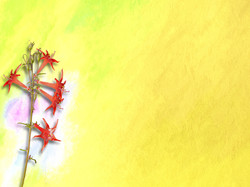 Yellow Painting 16