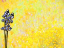 Yellow Painting 10