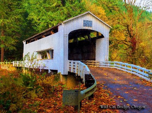 Wild Cat Creek Covered Bridge