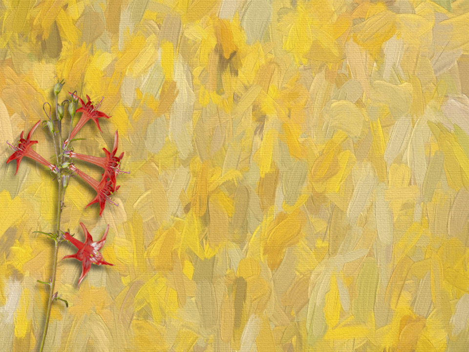 Yellow Painting 3