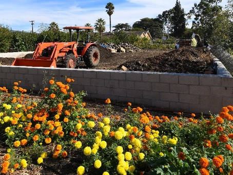 USDA Announces Cooperative Agreements for Community Compost and Food Waste Reduction