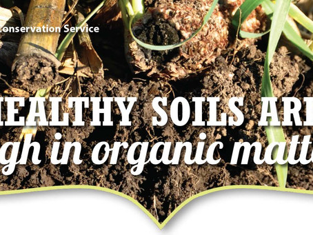 Healthy Soils Are: High in organic matter