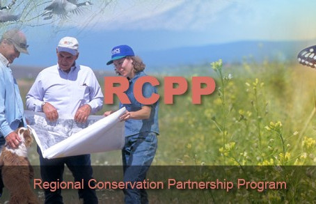 USDA Announces $260 Million Available for Regional Conservation Partnership Program