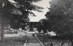 Merry Vale 1900