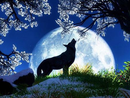 Ritual de Luna del Lobo - Luna Llena en Leo