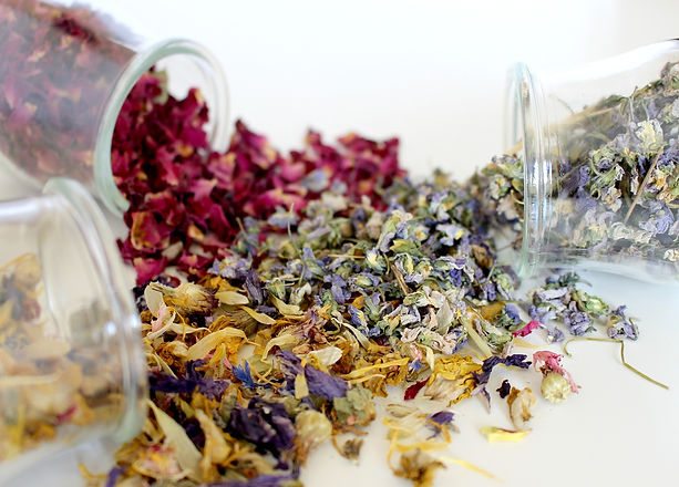 Plantes et fleurs séchées pour fabrication de cosmétiques naturels
