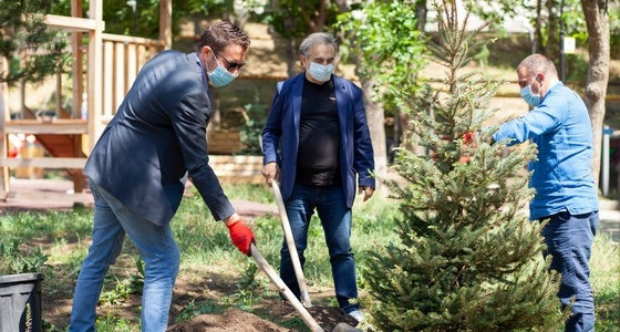 Minister of labor of Israel participated in a planting action in Tbilisi