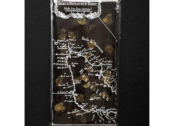 Tablette au chocolat noir et oranges confites